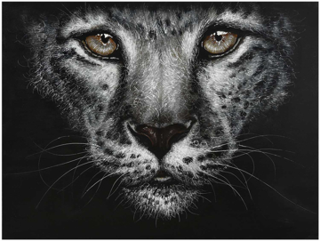 Picture of Wild Cat Canvas Art