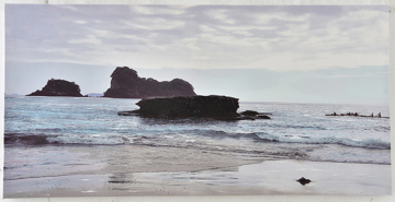 Picture of Lion Island Canvas